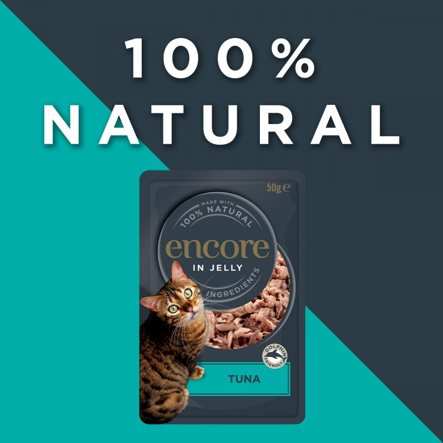 KW Digital are happy to be working alongside Reveal Pet Food